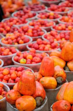 BRESIL - Salvador da Bahia Au marché Sao Joaquim Au premier plan : fruits de l'anacardier (noix de cajou)