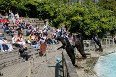 SARTHE Au zoo de La Flèche
