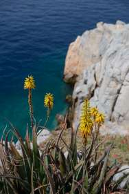 GRECE - Iles du Golfe Saronique Hydra