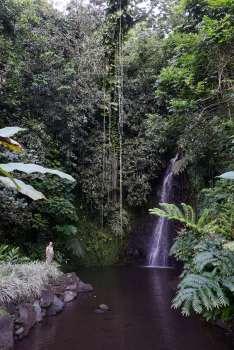 Polynésie Française Tahiti Petite rando aux jardins de Vaipahi