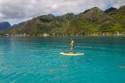 Polynésie Française Moorea Stand paddle au nord-ouest de Moorea, près d'un site touristique où les raies et requins sont presque apprivoisés...