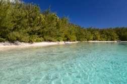 Polynésie Française Moorea Sur un motu privé du nord-ouest de l'île où débarquent les touristes pour déjeuner.