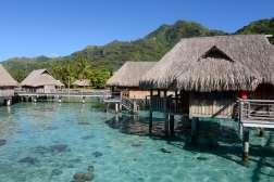 Polynésie Française Moorea Au Sofitel Moorea Ia Ora Beach resort
