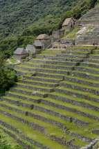 PEROU Machu Picchu Terrasses du secteur agricole et temple du Condor