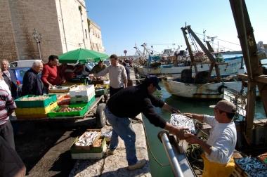 ITALIE - Pouille - Trani Déchargement du poisson au port