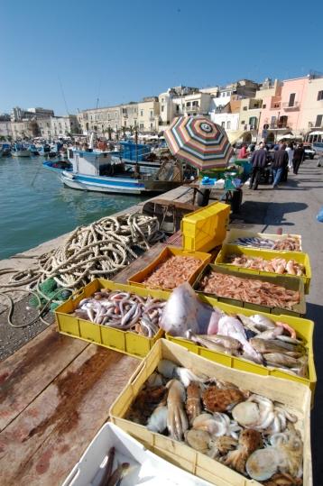 ITALIE - Pouille - Trani Etal de poissons sur le port