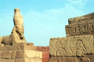 EGYPTE - Basse Nubie Oasis de Ouadi Es-Seboua Sphinx devant le temple de Ouadi Es-Seboua