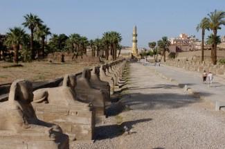 EGYPTE - Louxor Temple de Louxor Allée des sphinx