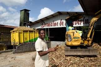 GUADELOUPE Ste-Rose Distillerie Domaine de Séverin Jean-Luc Narayanan tient des morceaux de canne à sucre, prêtes à être broyées