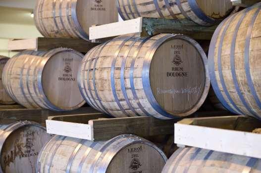 GUADELOUPE Basse-Terre Distillerie Bologne Foudres en chêne