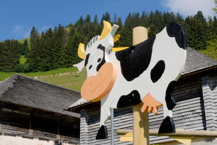 SUISSE Canton de Fribourg Moléson
