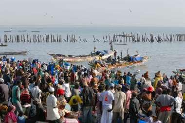 SENEGAL Petite Côte Retour de pêche à Mbour