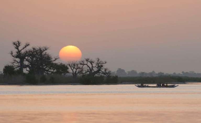 SENEGALSine Saloum Coucher de soleil sur baobabs
