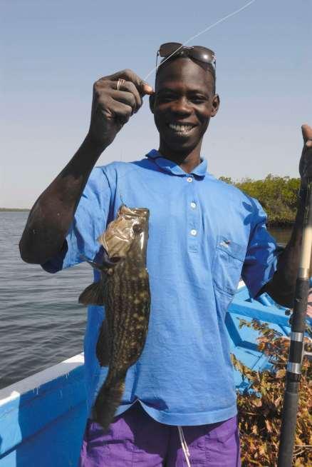 SENEGAL Sine Saloum Pêche au cours d'une promenade