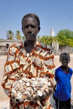 SENEGAL Sine Saloum Falia, petit village de pêcheurs Ousmane Fall montre les coquillages sur lesquels est construit le village