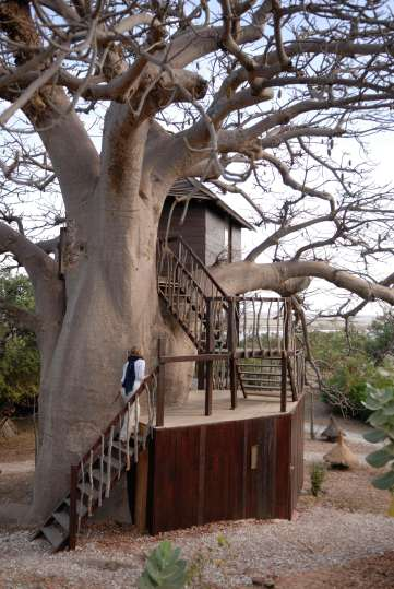 SENEGAL Sine Saloum Eco-Lodge Les Collines de Niassam