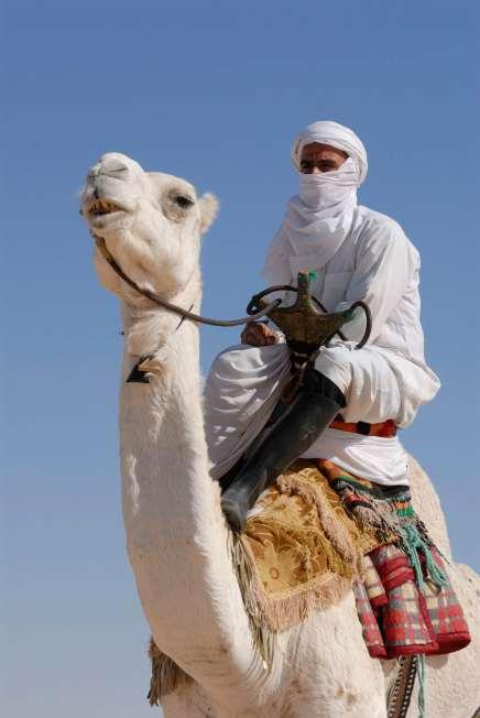 TUNISIE Groupe de musiciens, danseurs et acrobates aux portes du désert, à Douz