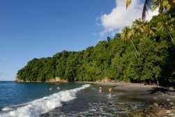 MARTINIQUE Plages du Nord-Est Anse Couleuvre