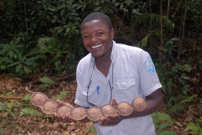 MAYOTTE Mont Combani Agent forestier (Ali Mari) montrant un fruit de l'arbre à haricot-géant