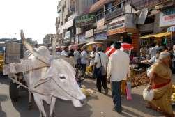 INDE du SUD Chennai (Madras) Marché de rue de Georges Town
