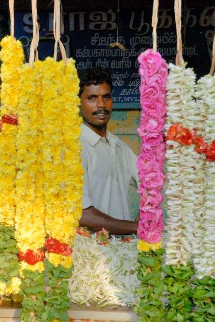 INDE du SUD Chennai (Madras) Vendeur de fleurs d'offrande devant un temple hindou