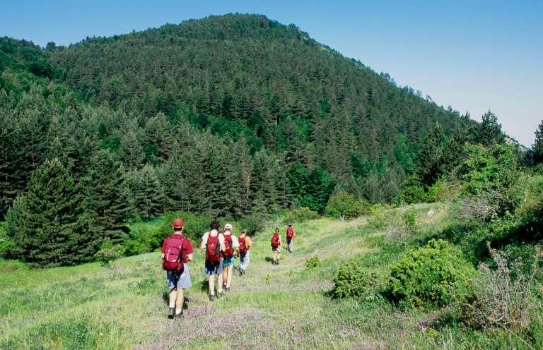 BULGARIEDans les Rhodopes, réserve naturelle de Cherven
