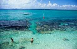 MEXIQUE - Yucatan Parc sous-marin Garrafon d'Isla Mujeres