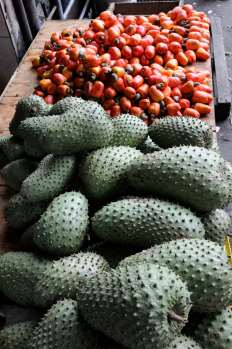 BRESIL - Salvador da Bahia Au marché Sao Joaquim Au 1er plan, corossols (ou graviola), et derrière, fruits de l'anacardier (noix de cajou)