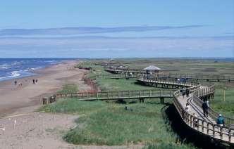 CANADA Nouveau-Brunswick Dunes de Bouctouche