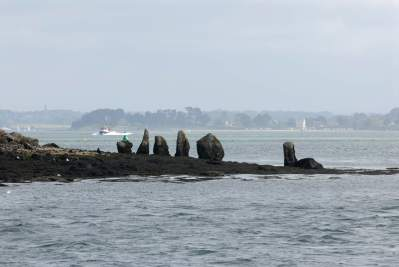 MORBIHAN Golfe du Morbihan Menhirs sur l'îlot d'Er Lannic