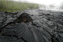 LA REUNION Coulée de lave dans le Sud Sauvage
