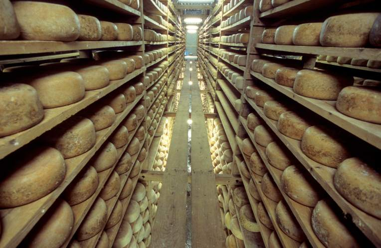 Vallée d'Ossau Saloir de fromages de brebis à Gere Belesten