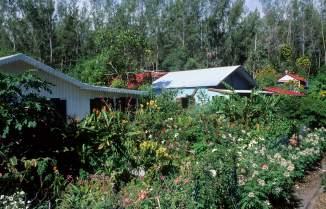 LA REUNION Cases créoles à St-Philippe