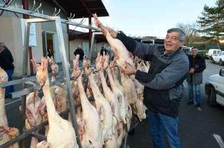 Gers - Samatan Marché au canard gras Daniel Delord charge ses canards gras pour vendre au marché