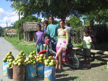 LA REPUBLIQUE DOMINICAINE Vendeurs de mangues