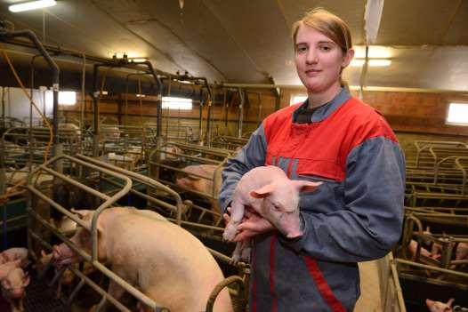 Jambon sec des Ardennes Solveig, élève des porcs à Clavy-Warby