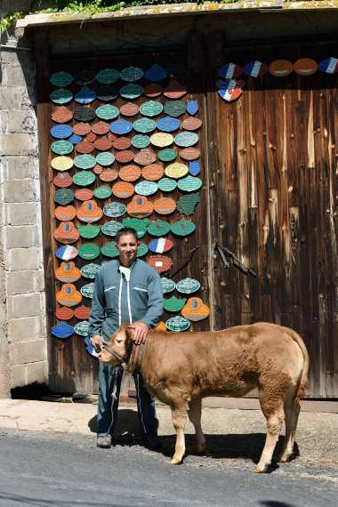 CORREZE Brignac-la-Plaine Eric Paleyrie présente un veau sous la mère, prêt à être vendu.