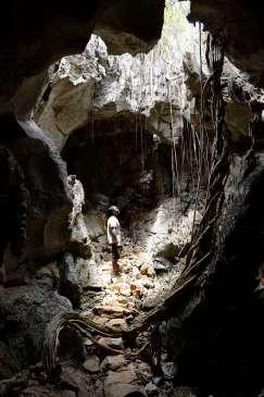 MADAGASCAR Grotte dans les tsingy de l'Ankarana