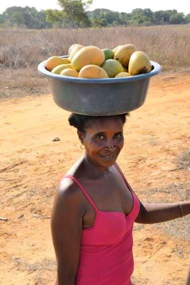 MADAGASCAR Antsaravibe, village près de l'Iharana Bush Camp