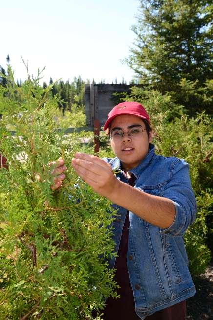 QUEBEC - Val d'Or Site culturel Kinawit Jeune autochtone expliquant les usages des plantes