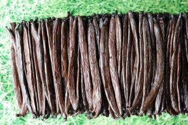 "Polynésie Française Raiatea ""Vanilla Tahitensis"""