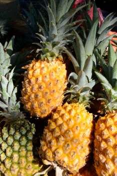 L'ananas Victoria de LA REUNION Table remplie d'ananas vendus au bord de la route à St-Pierre