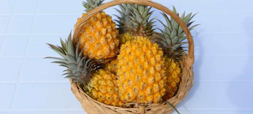 L'ananas Victoria de LaRéunion