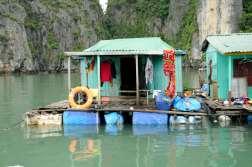 VIETNAM - Baie d'Halong Cabane d'un village flottant