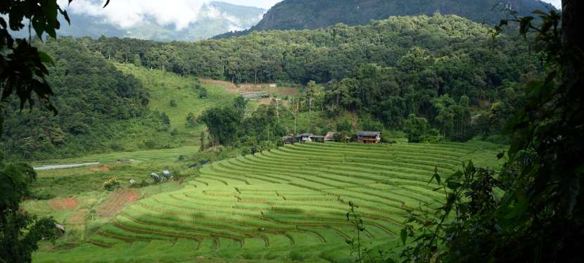 La Thaïlande en tourismedurable