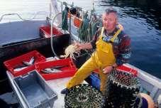 FINISTERE - Ile d'Ouessant Jean-Luc Jézéquel de retour de pêche