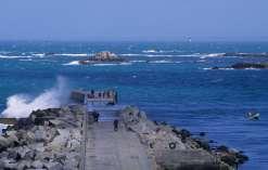 FINISTERE - Ile de Molène