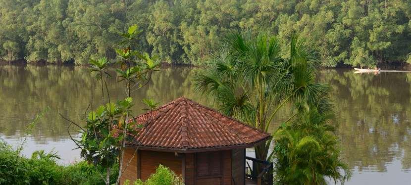 GUYANE, l'Amazonie française